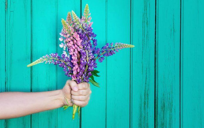 7 Simple Ways to Practice Gratitude